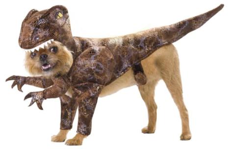 Déguisement chien dinosaure