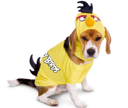 Déguisement chien Angry birds