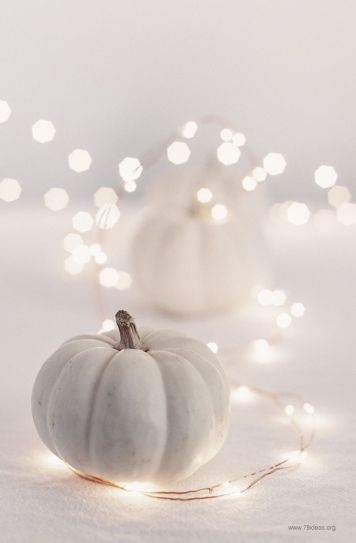 white halloween pumpkin
